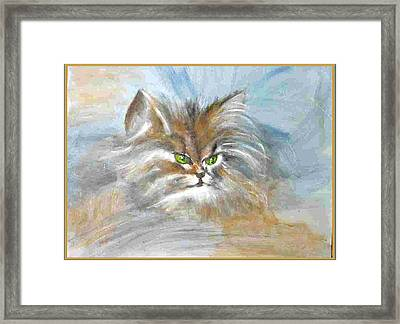 Framed Print featuring the painting cat by Dragica  Micki Fortuna