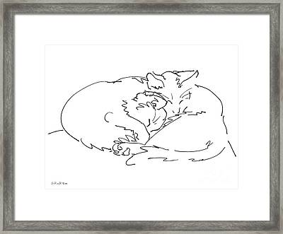 Cat Drawings 2 Framed Print