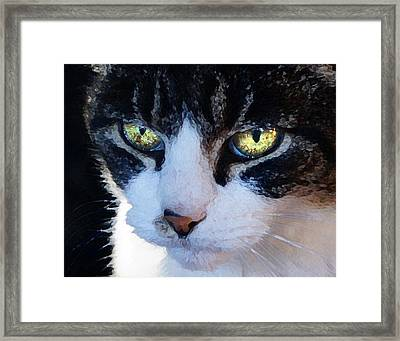 Framed Print featuring the digital art Cat Eyes by Jana Russon
