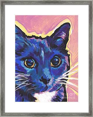 Cat Eyes Framed Print by Lea S