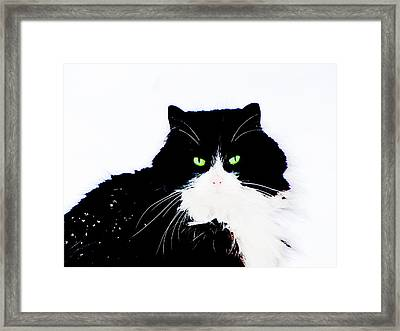 Framed Print featuring the digital art Cat Eyes by Yury Bashkin