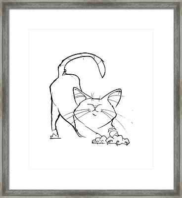 Cat Gesture Sketch Framed Print