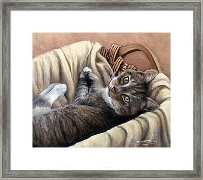 Cat In A Basket Framed Print