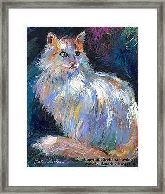 Cat In A Sun Painting By Svetlana Framed Print