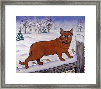 Cat In Christmas Landscape Framed Print
