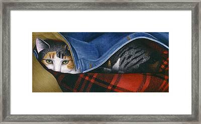 Cat In Denim Jacket Framed Print by Carol Wilson