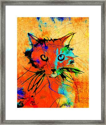 Cat In Red And Yellow Framed Print by Ann Powell