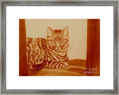 Cat In Sepia Framed Print by Caroline Street