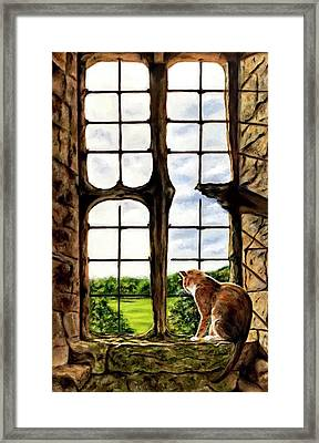 Cat In The Castle Window-close Up Framed Print