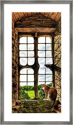 Cat In The Castle Window Framed Print