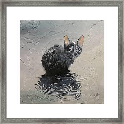 Cat In The Rain Framed Print by Jan Szymczuk