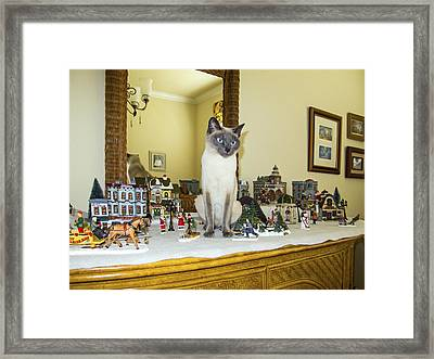 Cat In The Village Framed Print by Sally Weigand