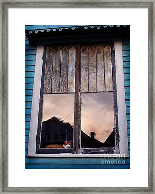 Cat In The Window Framed Print by Jeanne  Woods