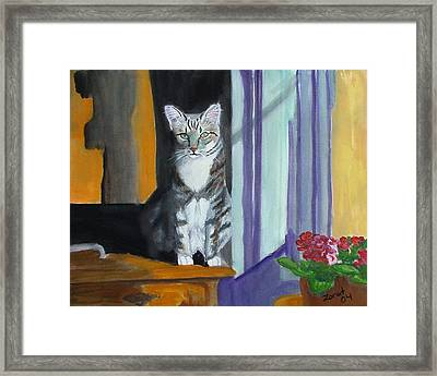 Cat In Window Framed Print