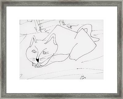 CAT Framed Print by Jerry Hanks