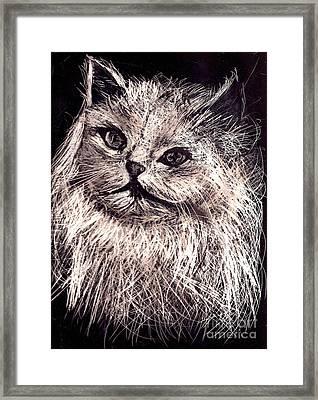 Cat Life Framed Print by Leonor Shuber