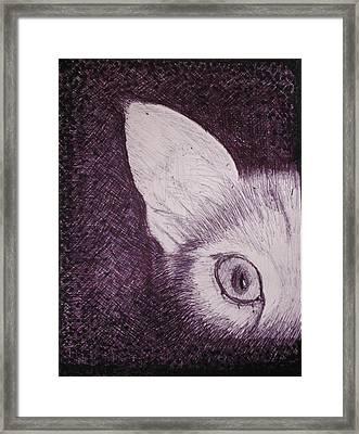 Cat Lurking Framed Print by SAIGON De Manila