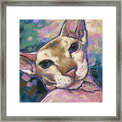Cat Framed Print by Nadi Spencer