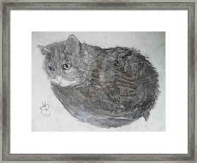 Framed Print featuring the mixed media Cat Named Shrimp by AJ Brown