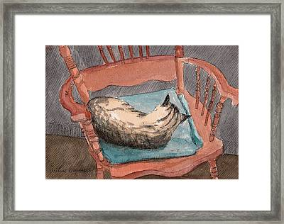 Cat Nap 2001 Framed Print by Arthur Barnes