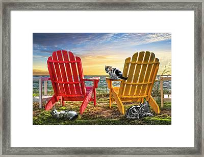 Framed Print featuring the photograph Cat Nap At The Beach by Debra and Dave Vanderlaan