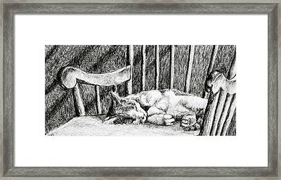 Cat Nap I Framed Print