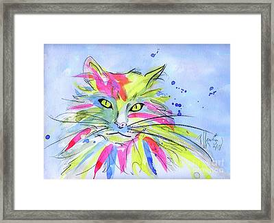 Cat Of Many Colors Framed Print