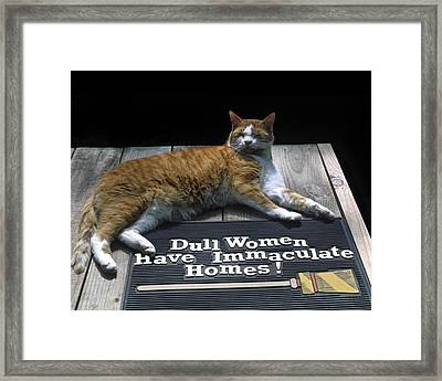 Cat On Dull Women Mat Framed Print by Sally Weigand