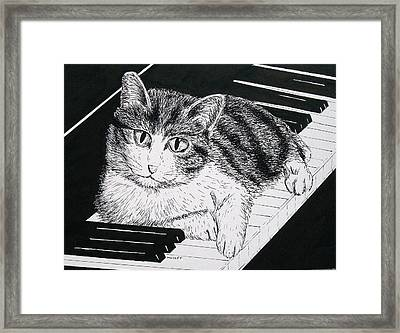 Cat On Piano Framed Print