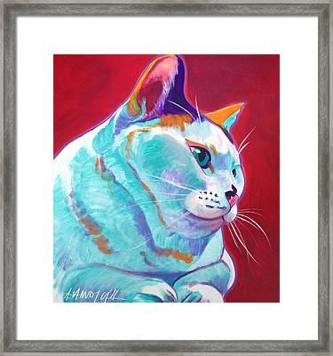 Cat - Pixie Framed Print