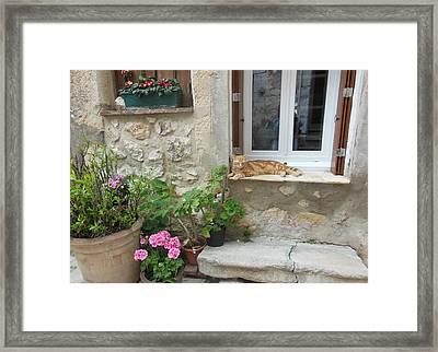 Cat Relaxing In St Paul De Vence Framed Print