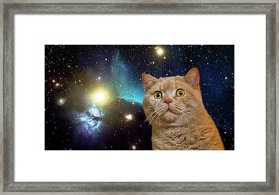 Cat Staring At The Universe Framed Print