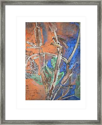 Cat Tail And Sun Flower Framed Print by Hal Newhouser
