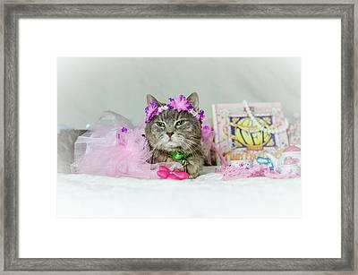 Cat Tea Party Framed Print