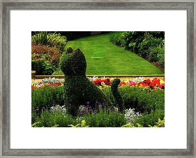 Cat Topiary Belfast Framed Print