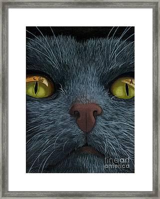 Cat Vision - Black Cat Oil Painting Framed Print by Linda Apple