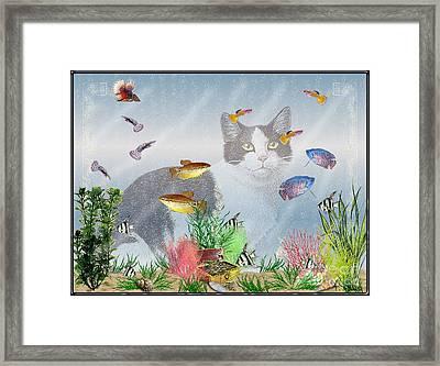 Cat Watching Fishtank Framed Print by Terri Mills