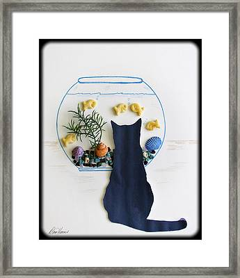 Black Cat And Goldfish Framed Print by Diana Haronis