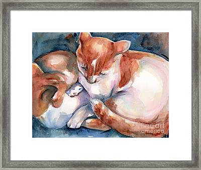 Cat Watercolor Two Yellow And White Cats Framed Print by Maria's Watercolor