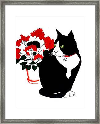 Cat With Geraniums Framed Print by Anita Stone