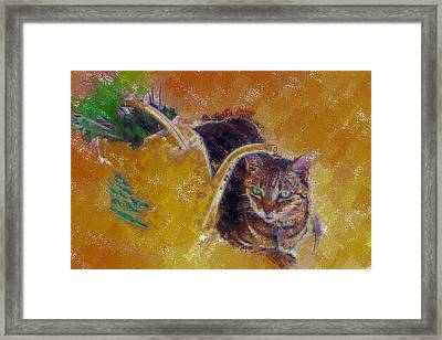 Cat With Watering Can Framed Print