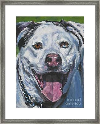 Catahoula Leopard Dog Framed Print