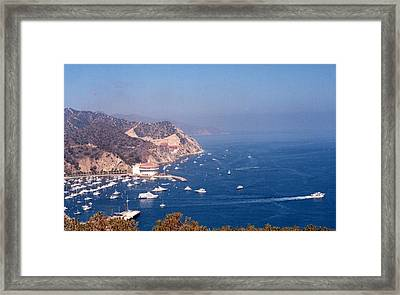 Framed Print featuring the photograph Catalina Calif............ by Tanya Tanski