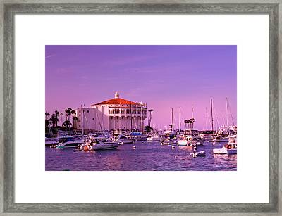 Catalina Casino Framed Print by Marie Hicks