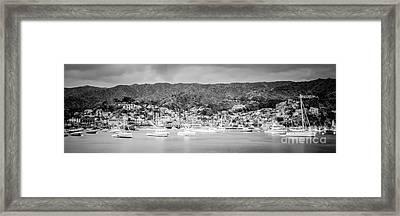 Catalina Island Avalon Bay Black And White Panorama Photo Framed Print by Paul Velgos