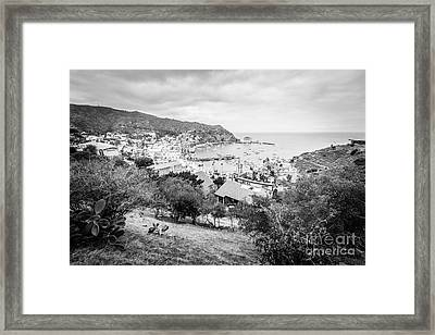 Catalina Island Avalon California Black And White Photo Framed Print by Paul Velgos