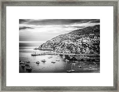Catalina Island Black And White Photo Framed Print