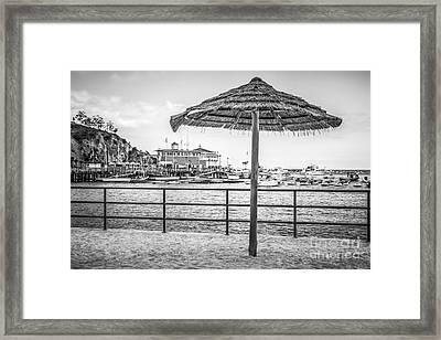 Catalina Island Umbrella In Black And White Framed Print