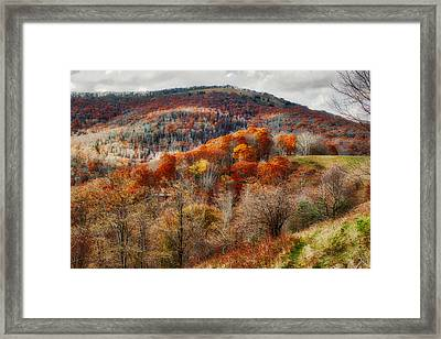 Cataloochee Fall Framed Print