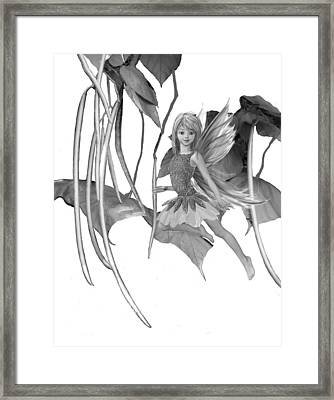Catalpa Tree Fairy With Seed Pods B And W Framed Print